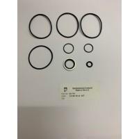 061700 24vrs Seal Kit